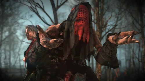 One of the Crones from The Witcher 3.