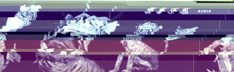 cyberspace-paper_tiger-glitched-1-4-2017-3-12-49-am